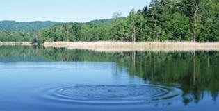 2009-10-003