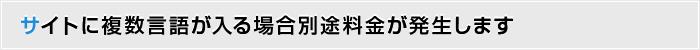 サイトに複数言語が入る場合別途料金が発生します